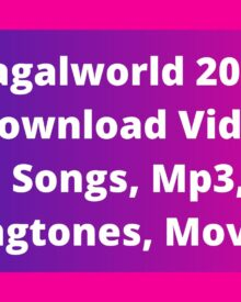 Pagalworld 2020: Download Video Songs, Mp3, Ringtones, Movies!