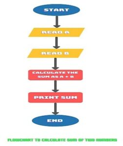 Example Of Flowchart in Hindi