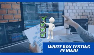 white box testing in hindi